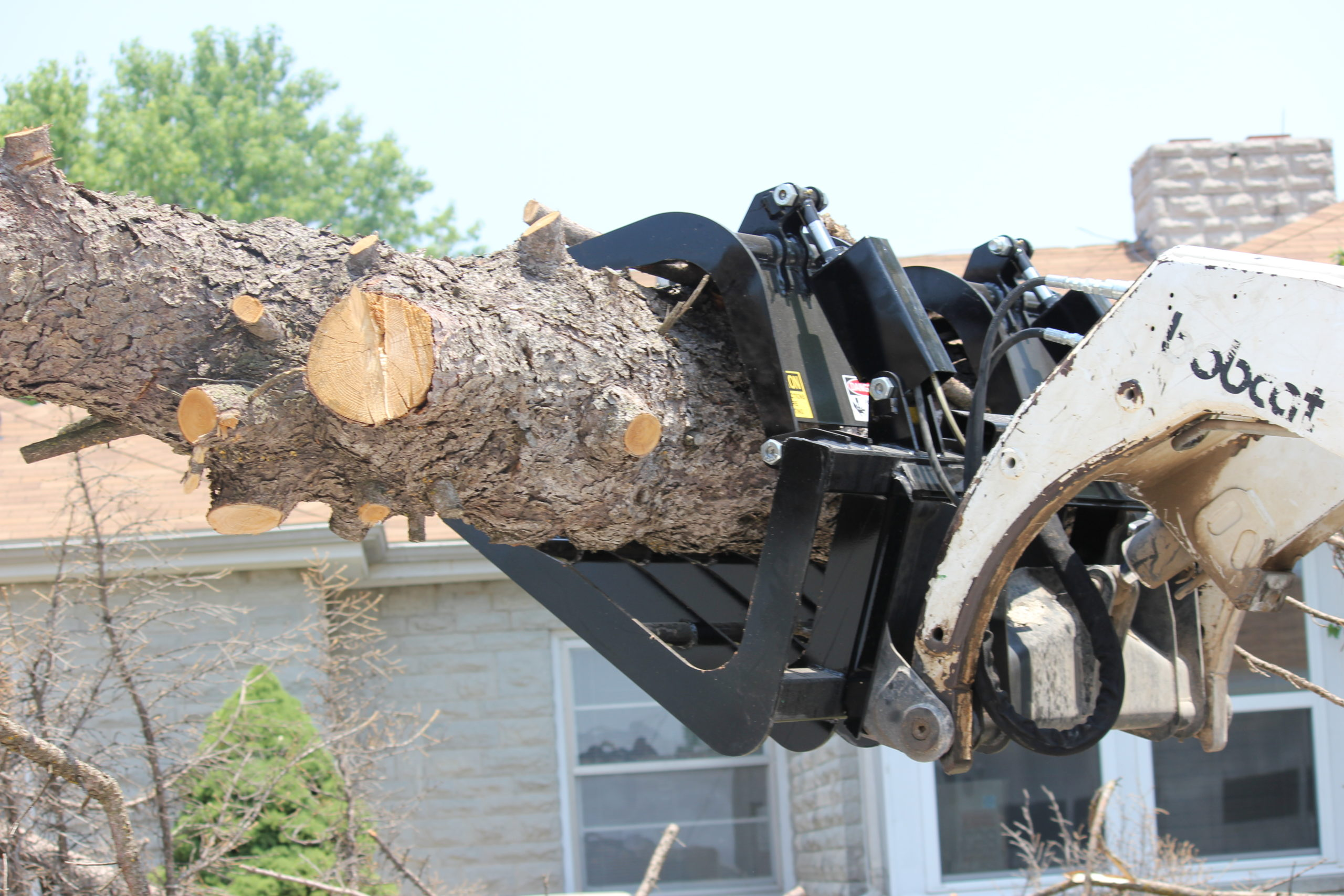 Brushboss Grapple lifting a large tree
